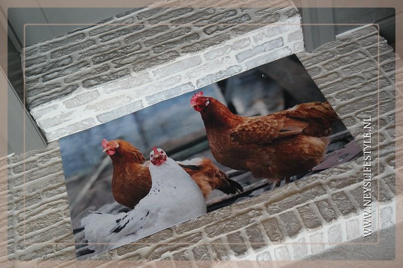 Deurmat kippen