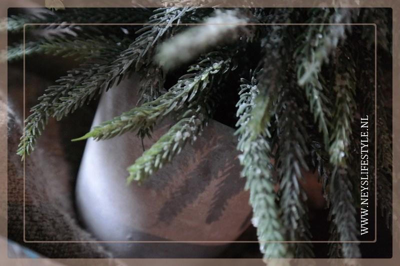 Kerstboom in pot Julias | L