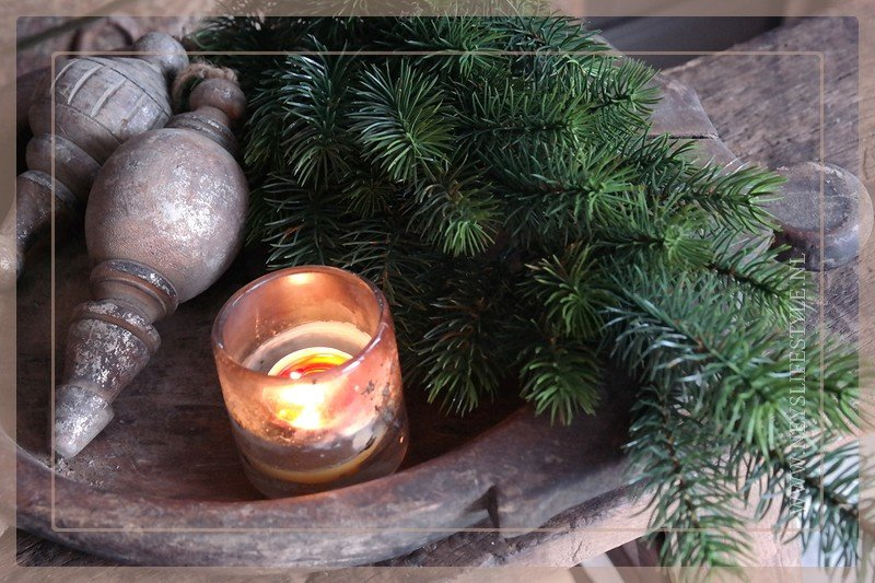 Pine tak donkergroen | 50 cm