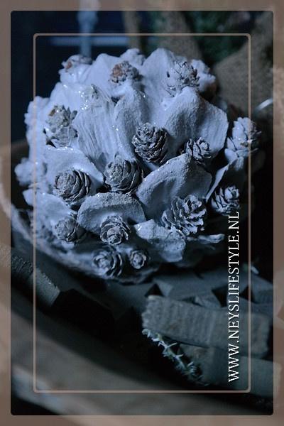 Bal snow pine | 13 cm