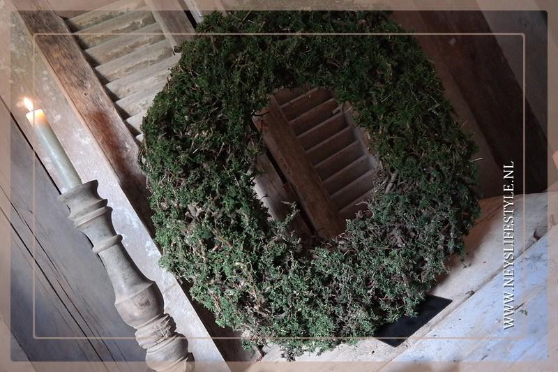 Krans Bonsai mos 60 cm