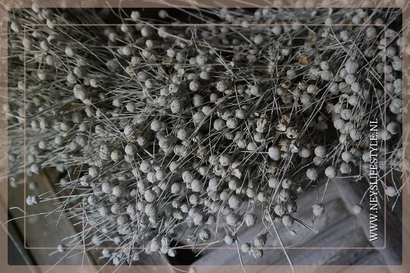 Vlaskrans | 60 cm