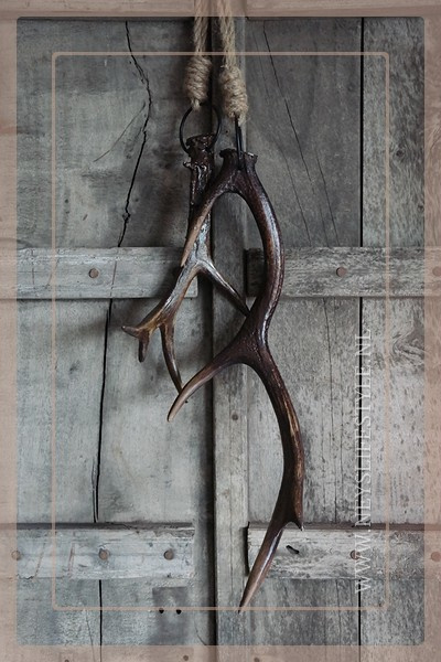 Gewei hanger bruin | L