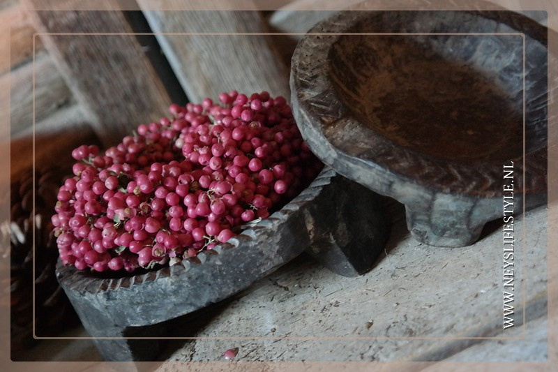 Chapati schaaltjes oud | XS