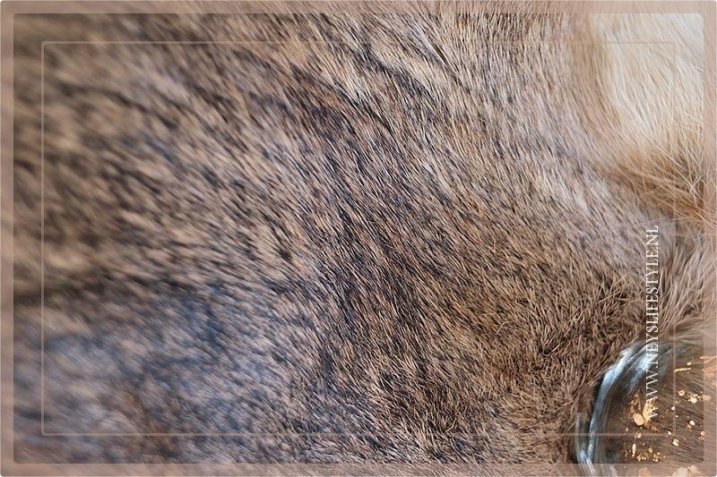 Konijnenvachtje bruin