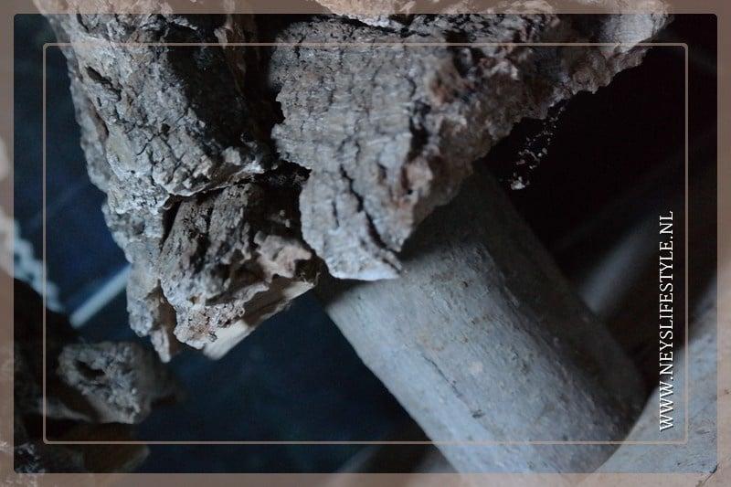 Tree wood bark | S