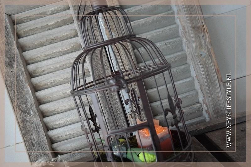 Vogelkooi | S