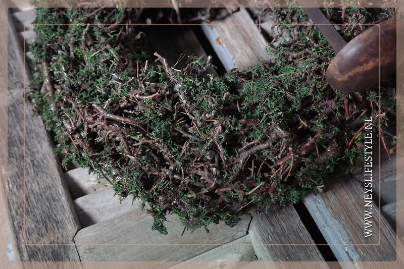 Krans Bonsai moss 30 cm