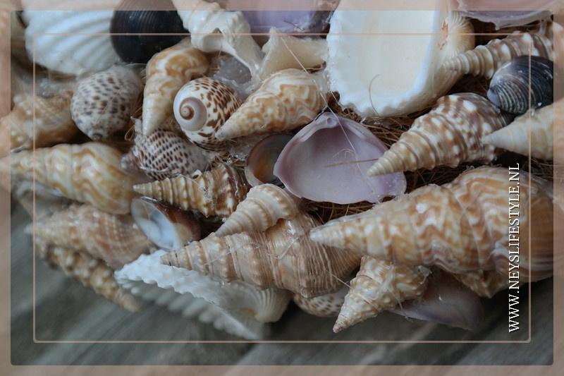 Krans Zomerschelpen   Naturel Mix   35cm