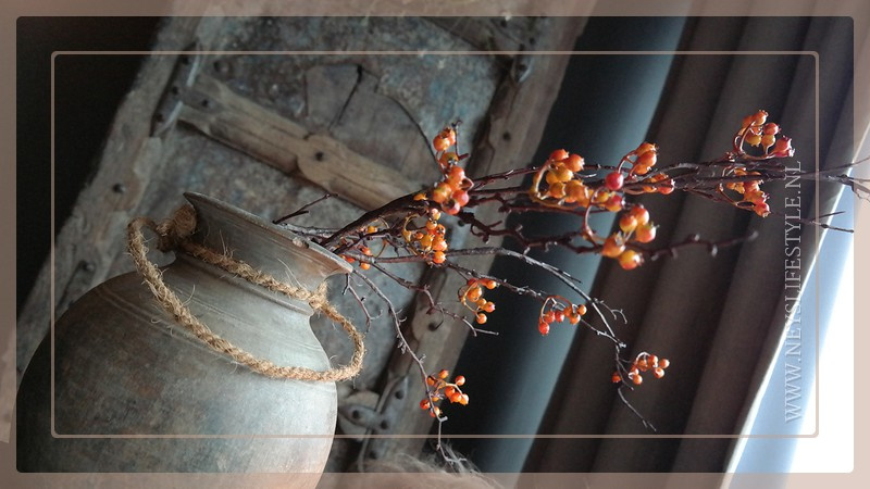 Bessen tak | rood/oranje 107 cm