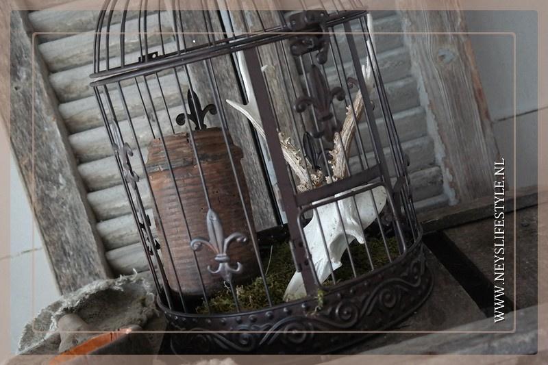 Vogelkooi | M