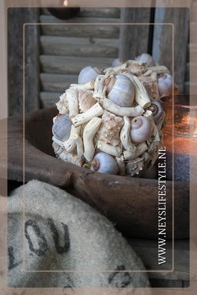 Bal schelp cauliflower 15 cm