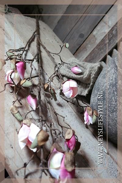 Magnolia tak roze |
