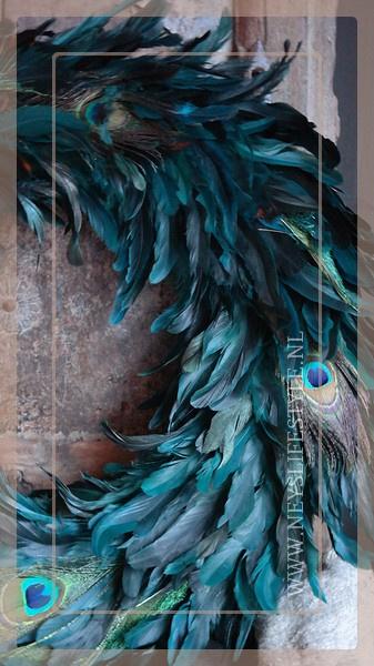 Peacock eye krans | 65 cm