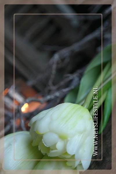 Tulp in bloei kunst 43 cm | créme