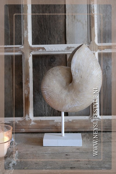 Schelp op standaard Nautilus | naturel