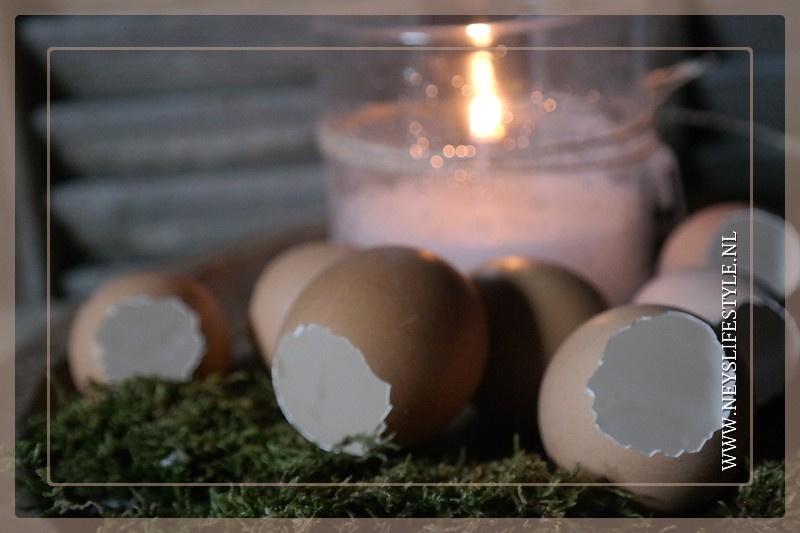 Doosje eieren open | 12 st