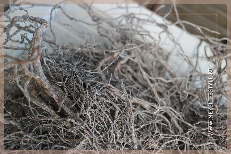 Wortel krans 48 cm | grijs