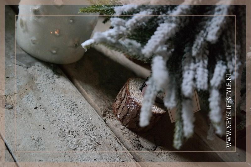 Kerstboom boomstam snow   S