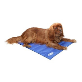 Scruffs Coolmat Medium blauw