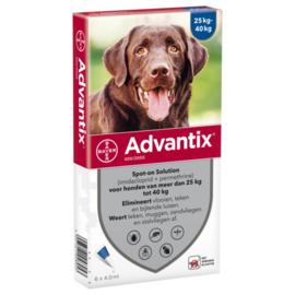 Bayer Advantix Hond 400