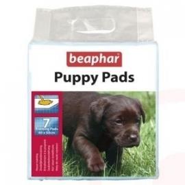 Pup & Verzorging