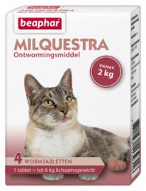 Milquestra Grote Kat ( 4 tablet voor katten > 2kg.)