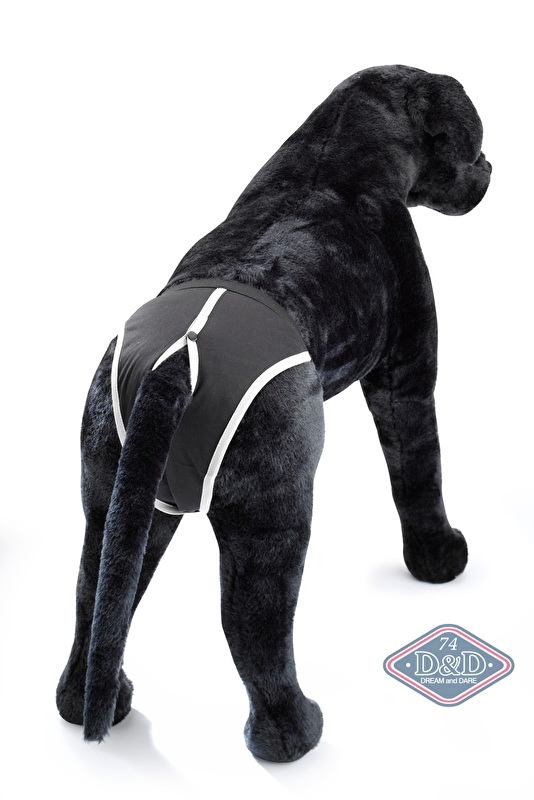 Loopsheidbroekje D&D Dog Pants