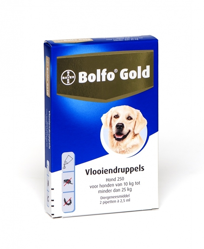 Bolfo Gold Hond 250 (10 tot 25 kg.) 4 pipet