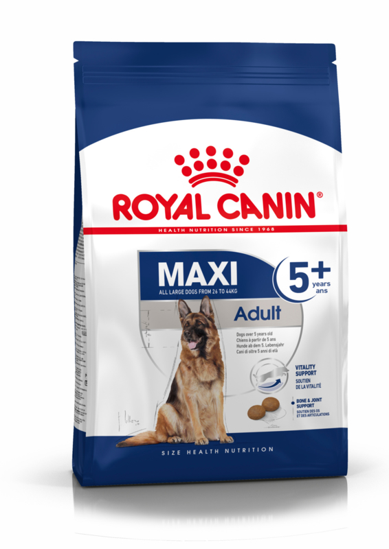 Royal Canin Maxi Adult 5+ 15 kg.