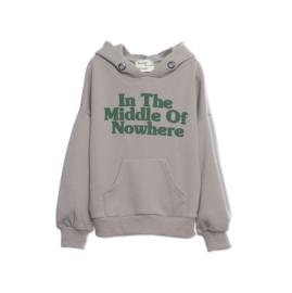 Wander & wonder hoodie ash