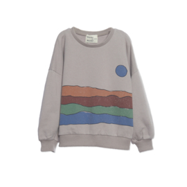 Wander & Wonder sweater desert print