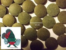 Jumbo Bodemtabletten 36% Spirulina (Ø 2,5 cm)