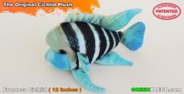 Frontosa Cichlid plush