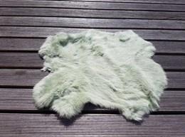 Konijnenvacht Gras Groen