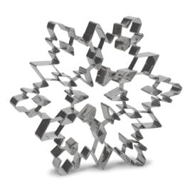 Sneeuwvlok RVS