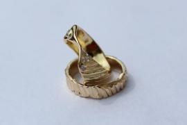 Geelgouden ringen naar gevonden schelpen
