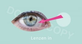 Lenzen in - M