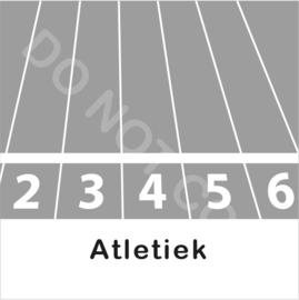 ZW/W - Atletiek