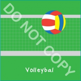 Volleybal (S&H)