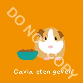 Cavia eten geven (K)
