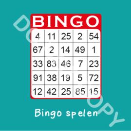 Bingo spelen (act.)