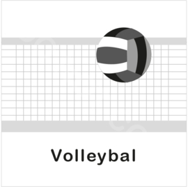 ZW/W - Volleybal