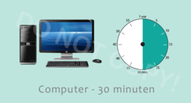 Computer 30 ALG/TV