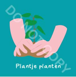 Plantje planten buiten (act.)