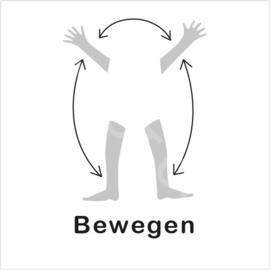 ZW/W - Bewegen