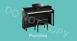 Pianoles - M