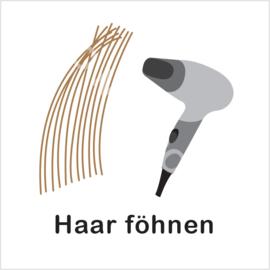 BASIC - Haar föhnen