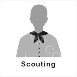 ZW/W - Scouting