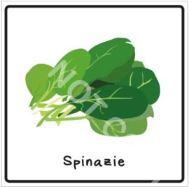 Groente - Spinazie (Eten)